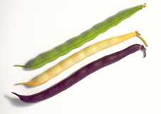 Green, yellow and violet bean pods. Three color pod beans isolated on white background Stock Photos