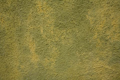 Green and yellow wall Stock Image
