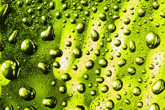 Green and yellow water drops Stock Images