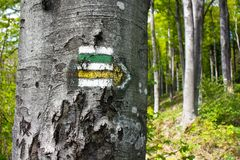 Green, yellow and white hiking trail Royalty Free Stock Photo