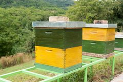 Green and yellow wooden Hives in an apiary with bees. Hives in nature. Apiculture royalty free stock photo
