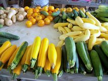 Green and Yellow Zucchini Royalty Free Stock Images