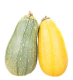 Green and yellow zucchini. Isolated on white background Stock Images