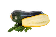 Green and yellow zucchini Royalty Free Stock Photo