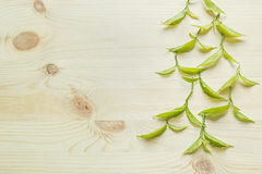 Green young leaves on a wooden beige background. Wood light background. Border. Top view. Royalty Free Stock Photography