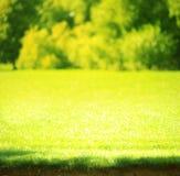 green zamazująca tło Obrazy Royalty Free