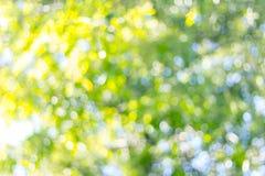 green zamazująca tło Obraz Royalty Free