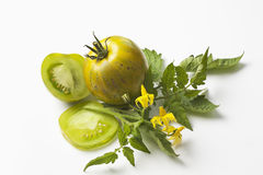 Green zebra tomatoes and flower on white background Stock Image