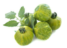 Green zebra tomatoes Royalty Free Stock Image