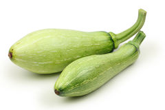 Green zucchini Royalty Free Stock Image