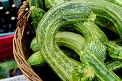 Green zucchini in brown bushel basket. For sale at local farmers market Stock Photos
