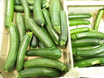 Green zucchini courgette  in the supermarket Royalty Free Stock Image