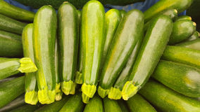 Green Zucchini. At a farmers' market Royalty Free Stock Photos