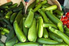 Green Zucchini Squash Royalty Free Stock Photography