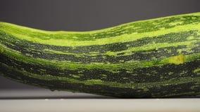 Green zucchini squash. Zucchini squash footage, sliding camera movement stock video footage