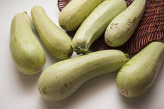 Green zucchini Stock Photography