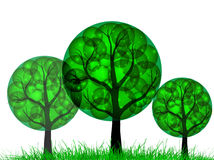 Green_trees Royalty Free Stock Photo