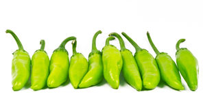 GreenChillies (Jalapenos). Green chillies (Jalapenos) arranged in a row on white background Stock Photography