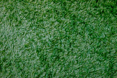 Greened color carpet texture - Green carpet Stock Photography