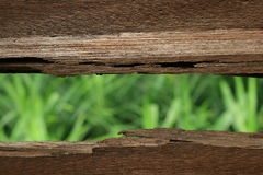 Greener Outside. A conceptual image, a view from a broken wood, good for business media purpose eg: think outside the box or looking at greener side Royalty Free Stock Photos