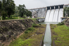 Greeneries Inside Neyyar Dam Royalty Free Stock Image