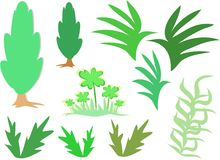 greenery смешивает заводы Стоковые Фотографии RF