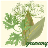 Greenery Stock Photo
