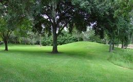 greenery Стоковое Изображение RF