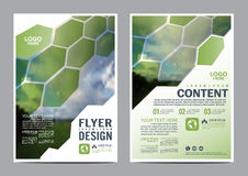 Greenery Brochure Layout design template. royalty free illustration