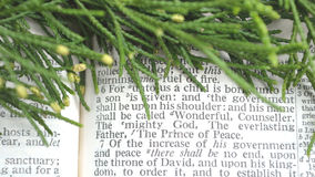 Greenery with Christmas scripture, Isaiah 9:6 Royalty Free Stock Photos