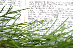 Greenery with Christmas scripture, Isaiah 9:6 Stock Photo