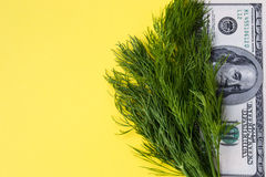 Greenery dill and 100 dollars on yellow background, copy space, horizontal Stock Photo