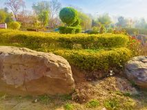 Greenery of green trees. Trees greenery in beautiful green city Islamabad Pakistan, season changing effects spring and summer, natural scenery of natural beauty Stock Image