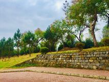 Greenery of green trees. Trees greenery in beautiful green city Islamabad Pakistan, season changing effects spring and summer, natural scenery of natural beauty Royalty Free Stock Photos