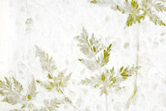 Greenery in Handmade Paper Royalty Free Stock Photography