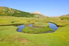 Greenery landscape in Corsica (make of Nino) Stock Photography