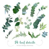 Greenery leaves vector big collection. Seeded eucalyptus, parvifolia foliage, plants mix. Hand painted branches on white background. Watercolor style set. All royalty free illustration