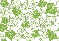 Greenery maple leaf seamless pattern background Stock Photo