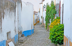 The greenery in medieval Obidos. The medieval streets of Obidos are decorated with green plants and scenic flowers along the walls or fenses of the buildings Royalty Free Stock Photography