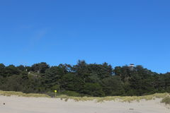 Greenery near newport beach Oregon. This is a view of historic new port beach site at Newport Oregon stock image
