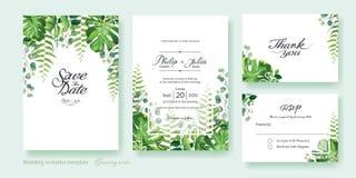 Greenery wedding Invitation, save the date, thank you, rsvp card Design template. Vector. Summer leaf, silver dollar eucalyptus, vector illustration