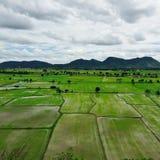 greenfield Fotografia de Stock Royalty Free