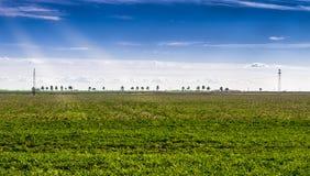 greenfield Arkivbilder