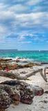 Greenfield plaża, NSW, Australia obrazy stock