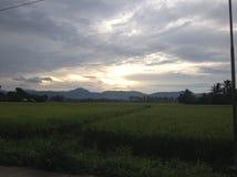 Greenfields и небо стоковая фотография