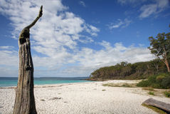 Greenfields Beach Jervis Bay Australia Royalty Free Stock Images