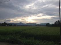 Greenfields ed il cielo Fotografia Stock