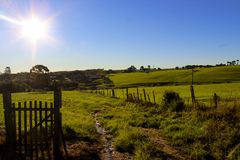 Greenfields at noon stock photography