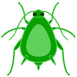 Greenfly insect icon Royalty Free Stock Photography