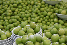 Greengage Plums Royalty Free Stock Images